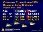 consumer expenditures 2009 bureau of labor statistics income after taxes