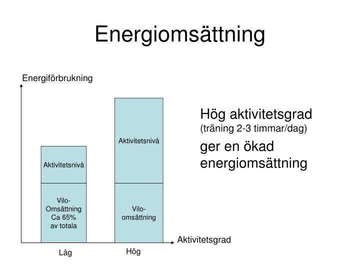 Energiomsättning