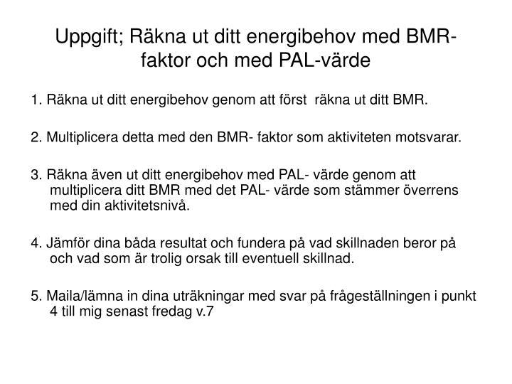 Uppgift; Räkna ut ditt energibehov med BMR- faktor och med PAL-värde