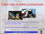 cabin crew as safety professionals2