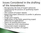 issues considered in the drafting of the amendments