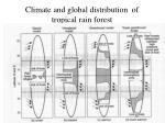 climate and global distribution of tropical rain forest