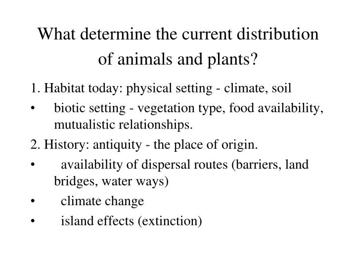 what determine the current distribution of animals and plants n.