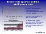 brazil trade openness and the catching up process