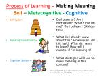process of learning making meaning self metacognitive cognitive