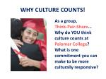 why culture counts1