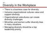 16 1 diversity in the workplace