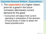 important demand shifters expectations
