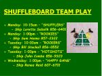 shuffleboard team play