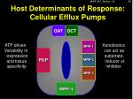 host determinants of response cellular efflux pumps2