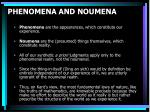 phenomena and noumena