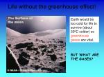 life without the greenhouse effect
