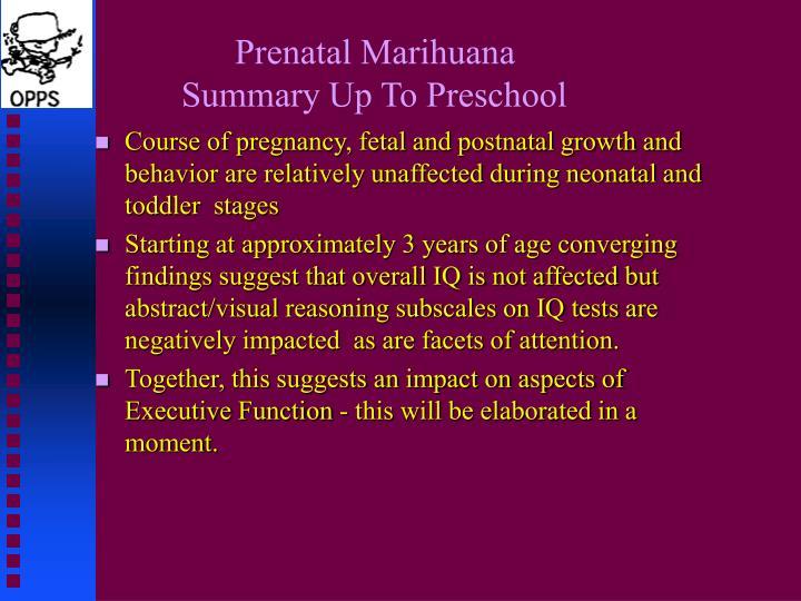 Prenatal Marihuana
