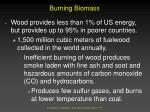 burning biomass