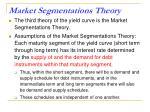 market segmentations theory