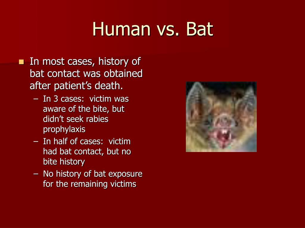 Human vs. Bat