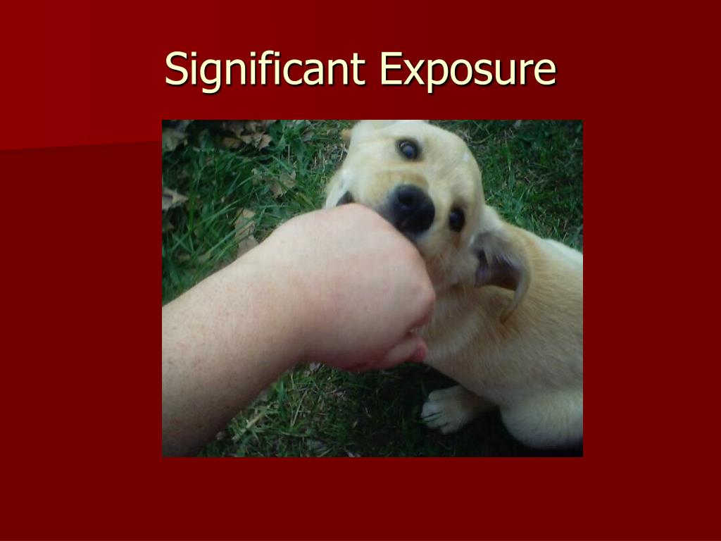 Significant Exposure