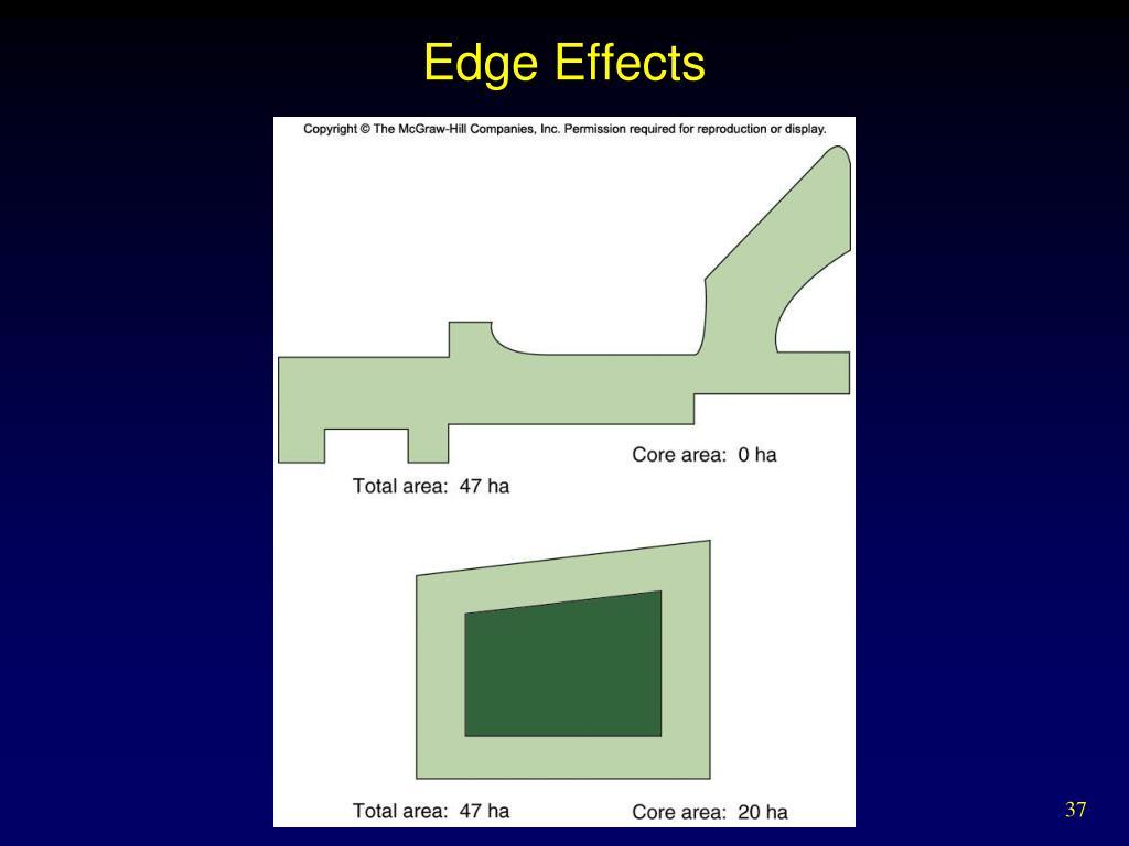 Edge Effects