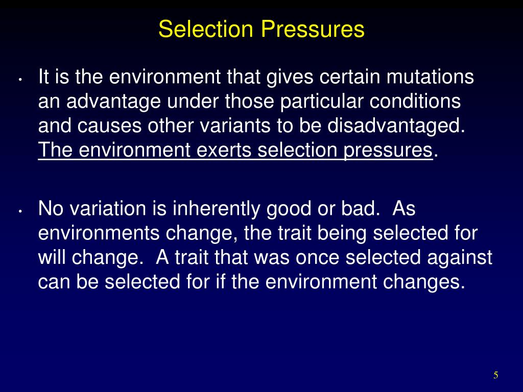 Selection Pressures