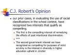c j robert s opinion1