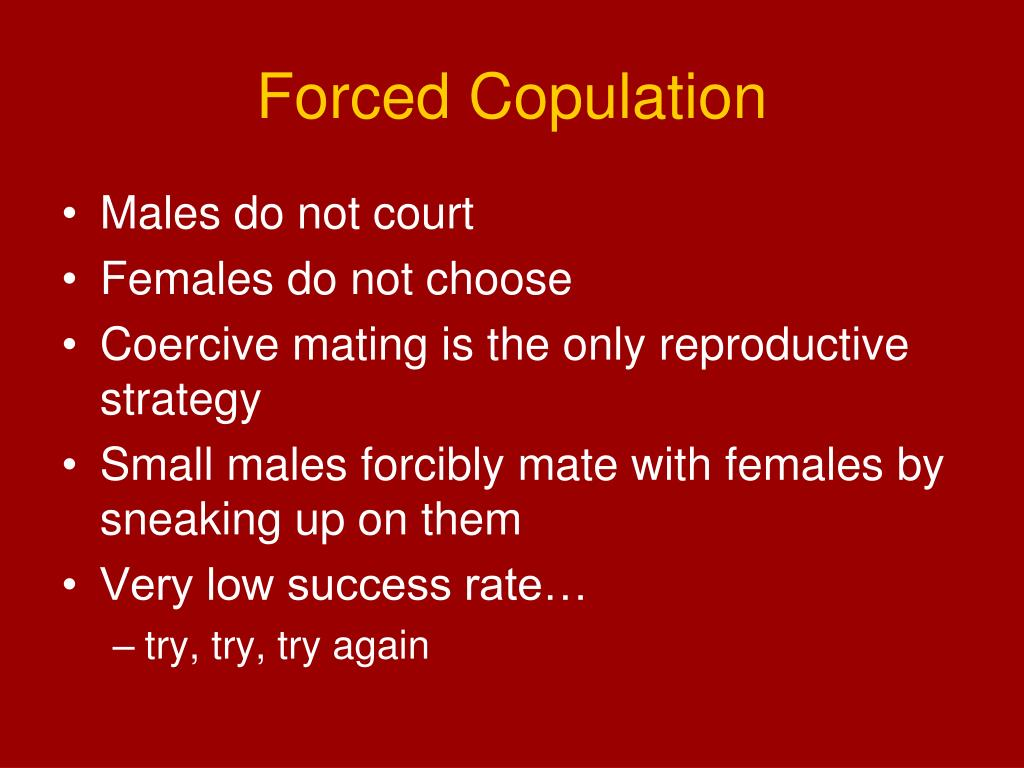 Forced Copulation