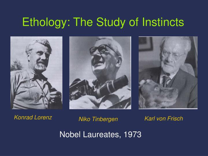ethology the study of instincts n.