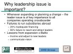 why leadership issue is important