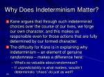 why does indeterminism matter