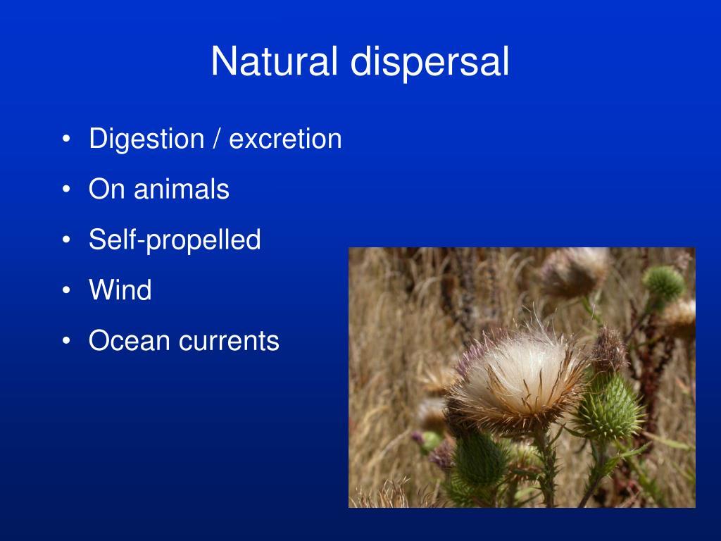 Natural dispersal