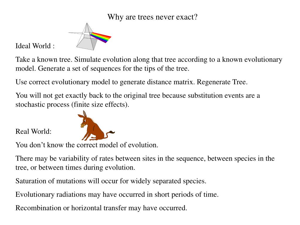 Why are trees never exact?