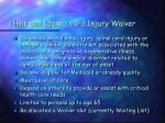 head and spinal cord injury waiver