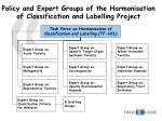 policy and expert groups of the harmonisation of classification and labelling project