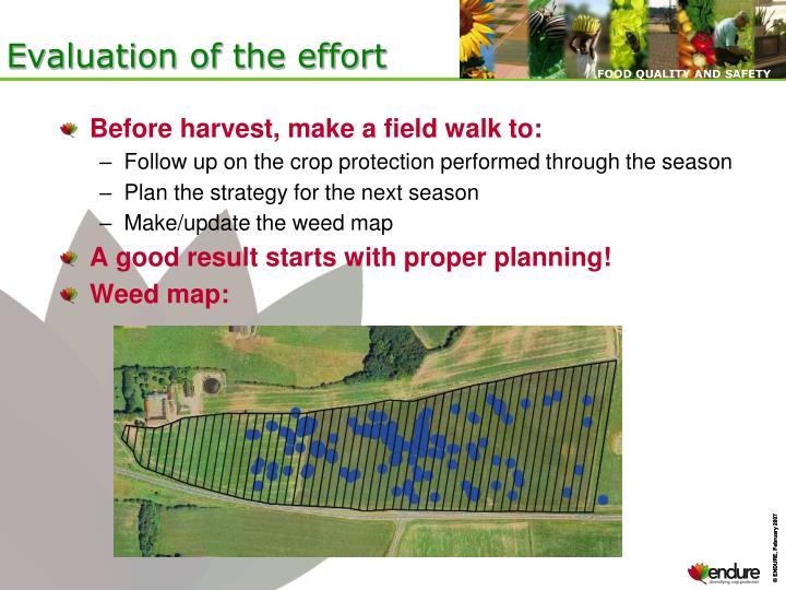 Evaluation of the effort