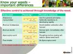 know your weeds important differences