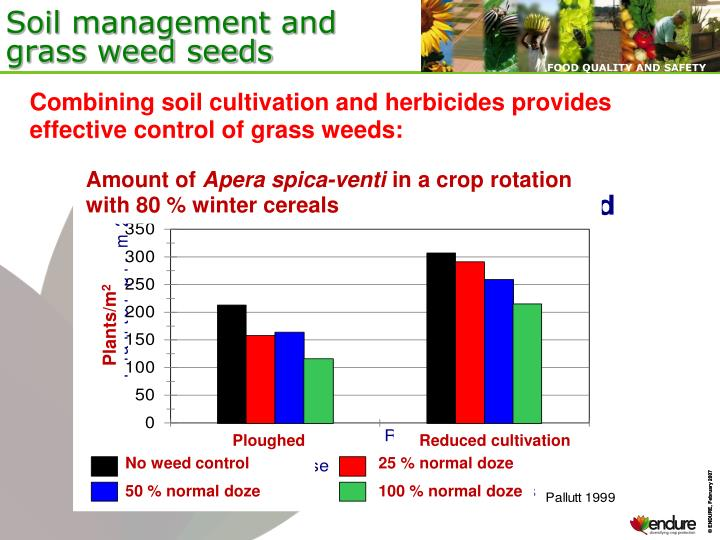 Soil management and grass weed seeds