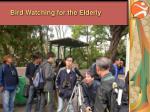 bird watching for the elderly1