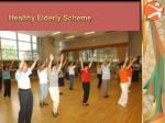 healthy elderly scheme1