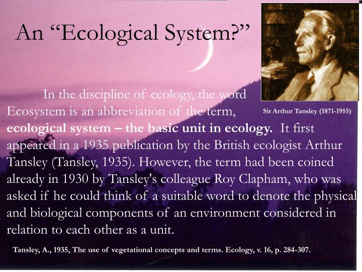 """An """"Ecological System?"""""""
