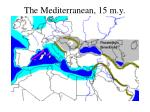 the mediterranean 15 m y