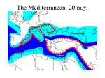 the mediterranean 20 m y
