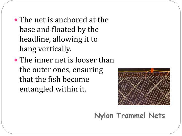 Nylon Trammel Nets