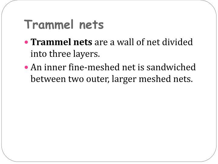 Trammel nets