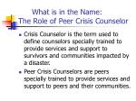 what is in the name the role of peer crisis counselor