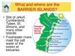 what and where are the barrier islands