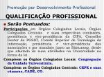 promo o por desenvolvimento profissional qualifica o profissional1