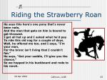 riding the strawberry roan