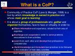 what is a cop