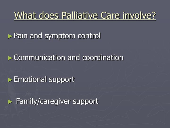 What does palliative care involve