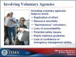 involving voluntary agencies