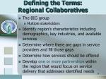 defining the terms regional collaboratives